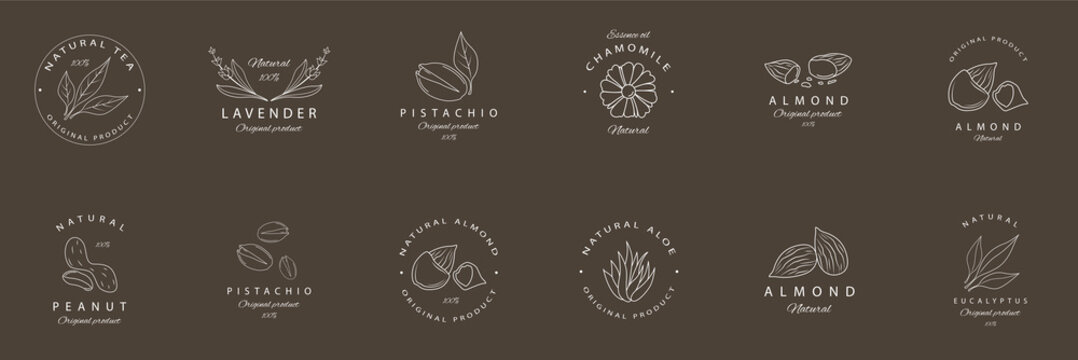 Argan, aloe, peanut, almond, eucalyptus, tea, chamomile and pistachio. vector set  packaging design templates and emblems. Logos in trendy linear style