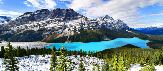 Wall Mural - Panorama View from Bow Summit of Peyto lake in, Canada