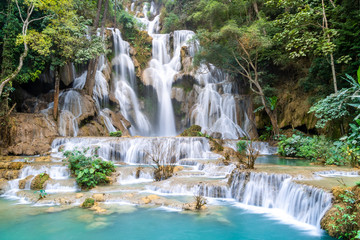 Tuinposter Watervallen The Kuang Si Falls or known as Tat Kuang Si Waterfalls. These waterfalls are a favorite side trip for tourists in Luang Prabang with a turquoise blue pool
