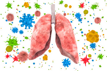 Lungs with viruses and bacteria. Lungs disease, infection concept, 3D rendering