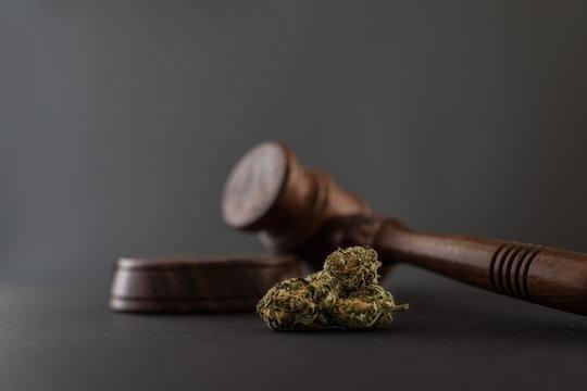 Cannabis und Richterhammer Nahaufnahme grauer Hintergrund