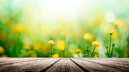 Wall Mural - Yellow spring flowers on wooden background
