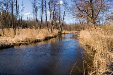 Fototapeta Dolina rzeki Supraśl, Puszcza Knyszyńska, Wiosna na Podlasiu obraz