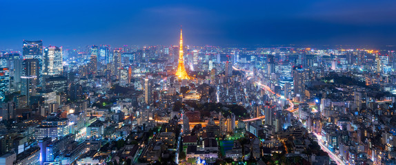 Wall Murals Tokyo Panorama view over Tokyo tower and Tokyo cityscape view from Roppongi Hills at night in Tokyo,Japan