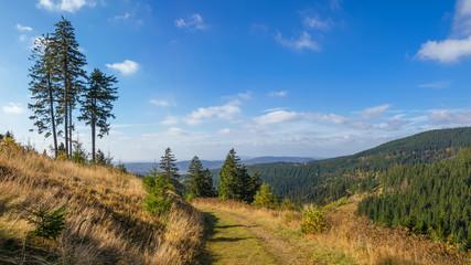Landschaft im Mittelgebirge