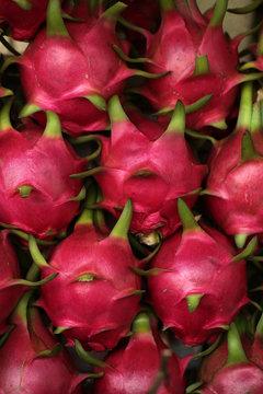 Close-up of dragon fruit, Vietnam