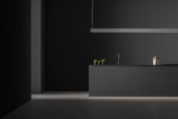 Modern black style kitchen interior.