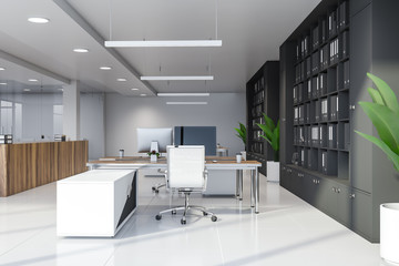 White modern office with bookcases