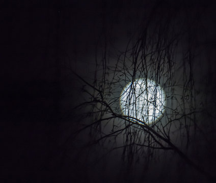 Super Moon 19.02.2019.Moon in full moon phase