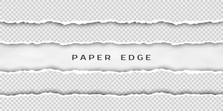Paper tear border. Set of torn horizontal seamless paper stripes. Paper texture with damaged edge isolated on transparent background. Vector illustration