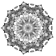 Elegant Chaos Fractal 2 -Black and White- 3D Motion Graphics Design