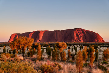 Uluru Ayers Rock Australia Fototapete