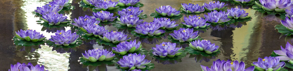 Door stickers Lotus flower lotus,purple artificial flowers are floating on the water
