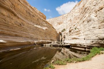 Canyon of Ein Avdat National Park, the Negev Desert, Southern Israel