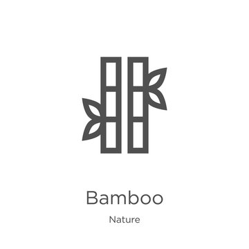 bamboo icon vector from nature collection. Thin line bamboo outline icon vector illustration. Outline, thin line bamboo icon for website design and mobile, app development