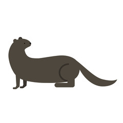 otter flat illustration on white
