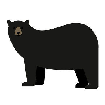 black bear flat illustration on white