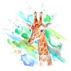 Yellow giraffe portrait and color blotch.Watercolor hand drawn illustration.White background.African animals illustration.