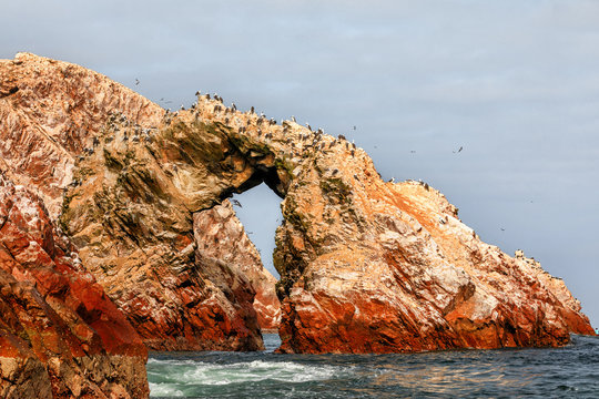 Birds  on the rocks of the Ballestas Islands in the Paracas National park, Peru.