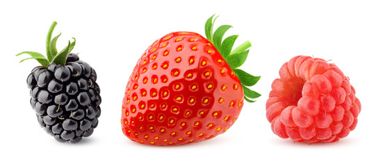 wild berries mix, blackberry, strawberry, raspberry, isolated on white background, clipping path, full depth of field Fototapete