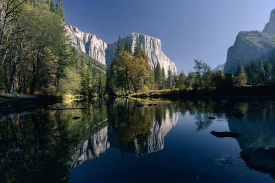 El Capitan and autumn colors reflected in the Merced River in early morning light in Yosemite National Park
