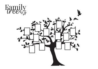 Family Tree Vector with Picture Frame, Wall Decals, Wall Decor, Flying Birds Silhouette on a tree, isolated on white background. Art Design