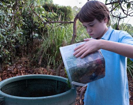 Primary school aged child tipping food scraps into the compost bin.