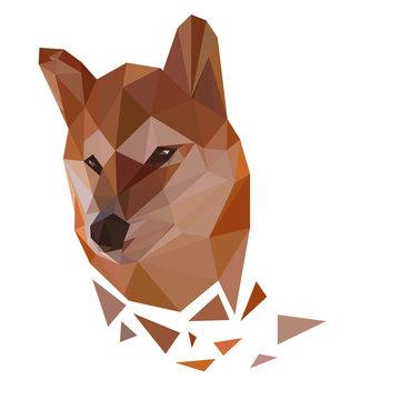 Low poly portrait of japanese dog shiba inu.