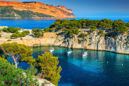 Calanques de Port Pin bay in Cassis near Marseille, France