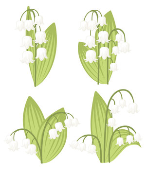 Convallaria majalis. Lilly of the valley. Mid spring colorful flower. Flat vector illustration isolated on white background. Flowers set