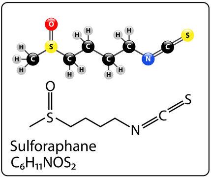 Sulforaphane Molecule Structure