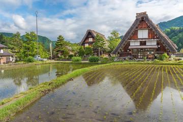 Fototapete - Historic Village of Shirakawa-go in Japan in Springtime