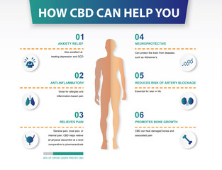 how cbd can help you,effect on body,vector infographic on white background.