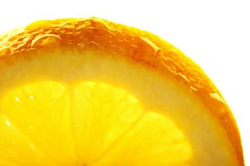 Printed roller blinds Slices of fruit Lemon slice with a water droppings. Macro studio shot