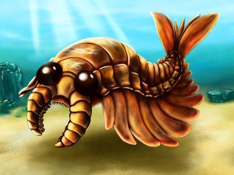 Illustration of Anomalocaris in sea background