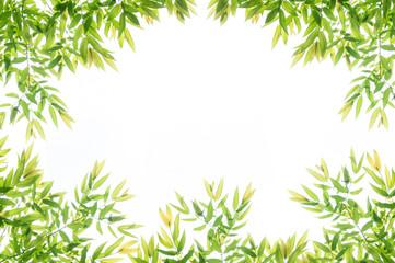 Green leaf border frame for background.