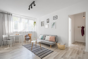 Spacious living room in scandinavian style