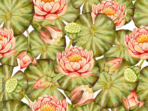 Illustration Of Watercolor Hand Drawn Pattern Of Pink Lotus Flower