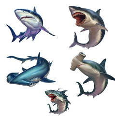 Big set of sharks isolated realistic illustration. Great White Shark. Gray reef shark. Hammerhead shark. Big Monster Shark