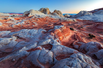 Wall Mural - White Pocket in Vermillion Cliffs, USA