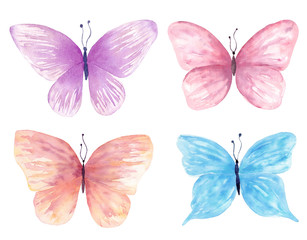Watercolor butterfly set hand drawn painting. Can be used for greeting cards,wedding invitations,logo,T-shirts,bags,posters,printing on fabric,wallpaper,packaging.