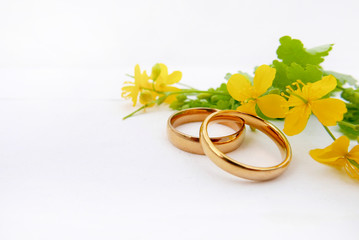 Wild flowers with gold rings and copy space
