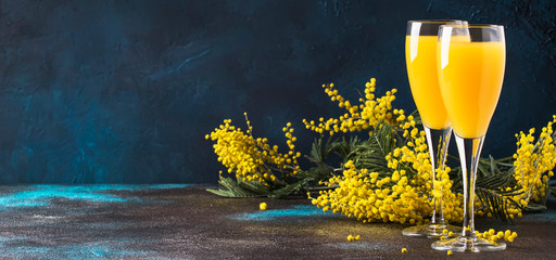 Classic alcohol cocktail mimosa with orange juice and cold dry champagne or sparkling wine in glasses, blue stone background with yellow flowers, copy space, spring mood, selective focus