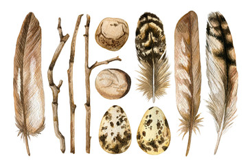 Watercolor hand drawn set of brown feathers, branches, pebble, egg isolated on white background