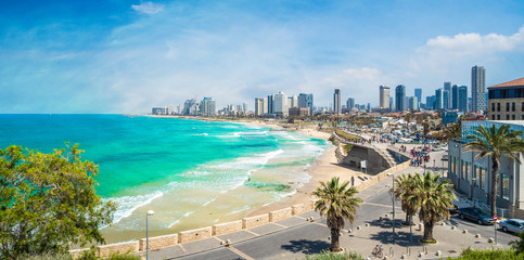 Panoramic view of  Tel Aviv, Israel Wall mural
