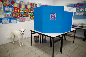 A dog stands near a voting booth together with his owner as Israelis began voting in a parliamentary election, at a polling station in Ashkelon, Israel
