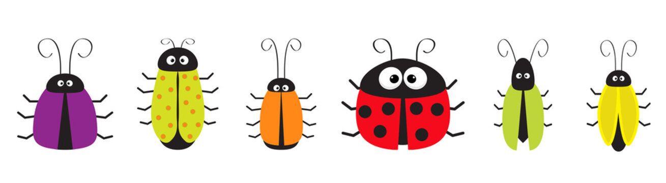 Cute bug cockroach set line. Funny cartoon character. Baby design. White background. Isolated. Flat design.