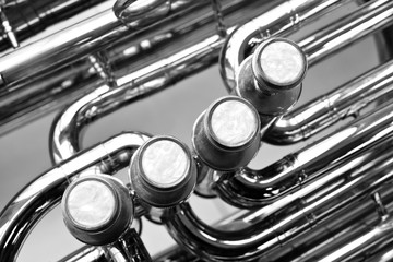 Wall Mural - Fragment of a bass tuba valves closeup in black and white