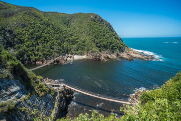 Storms River Suspension Bridge, Eastern Cape, Tsitsikamma National Park, South Africa Wall mural