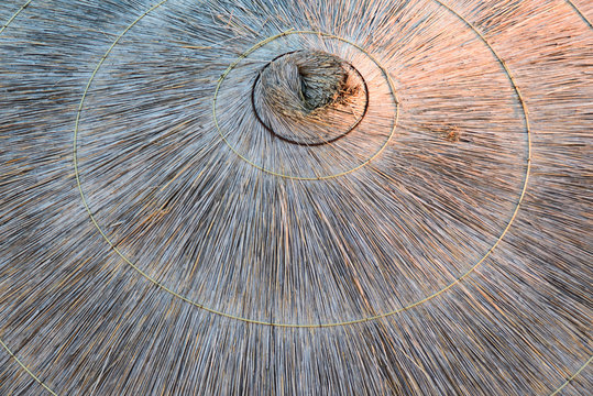 view from above of beach straw umbrella background, top view of circle lying dry grass pattern, stock photo image